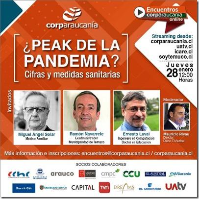 Peak Pandemia